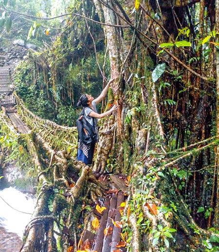 Person reaching up at the base of a large tree