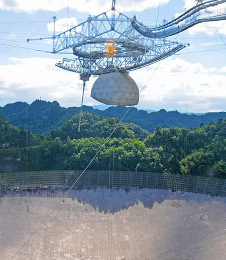 Metal grid suspended over a giant concrete bowl; foliage in the background