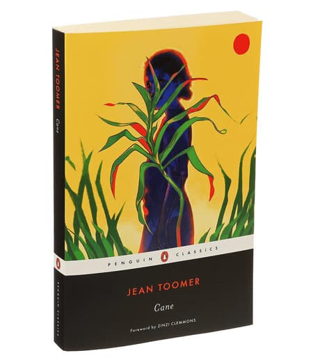 Cane book cover