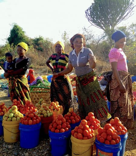 Roadside vendors sell tomatoes in Mikumi, Tanzania