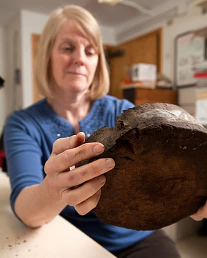 Carol Griggs '77, Ph.D. '06, a research associate and lab manager for Cornell's Dendro Lab, examines a sample from a 12,000-year-old tree to choose the best radius for ring-width measurements. Photo by Lindsay France/University Photography.