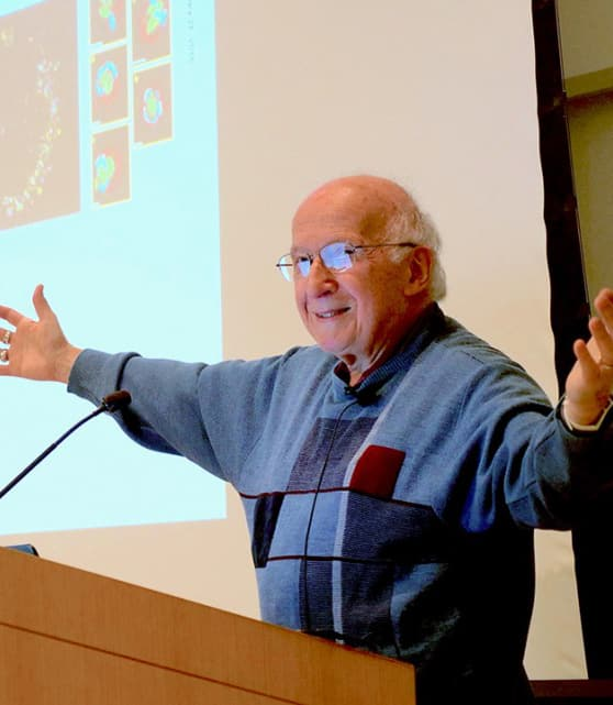 Photo of Roald Hoffman giving a presentation