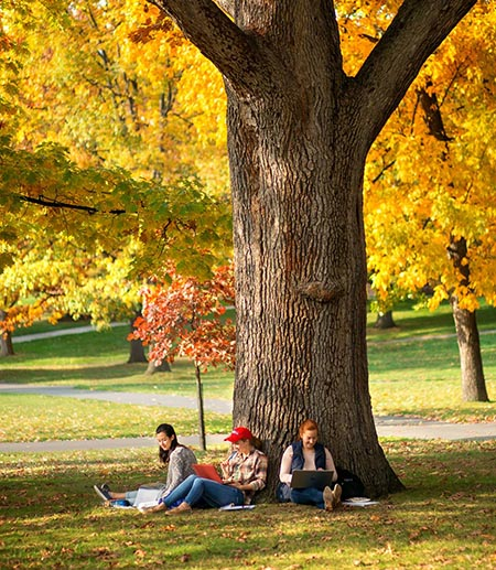 Arts Quad in the fall