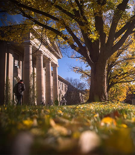 Fall scene on the Arts Quad