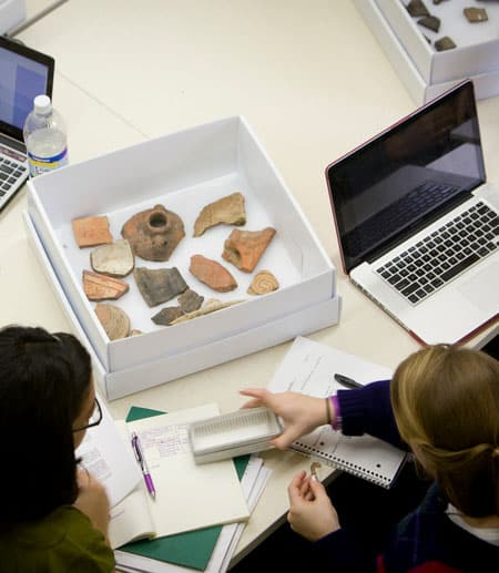 Students studying fossils