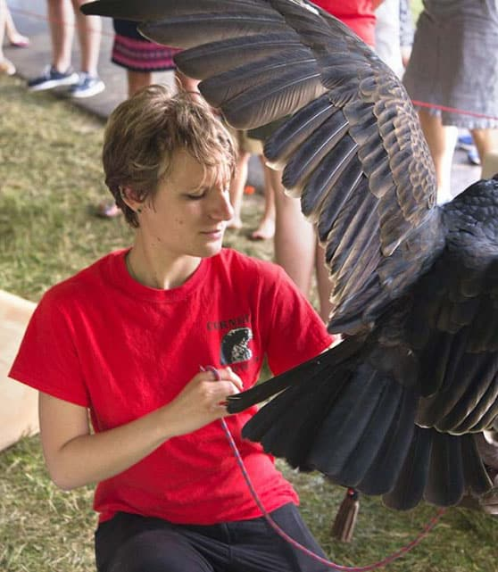Student assisting with the conservation of birds of prey