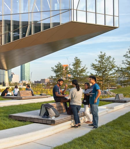 Image from Cornell University College of Arts and Sciences