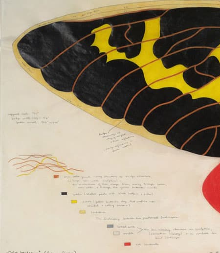 Image of a butterfly wing from painting in exhibit