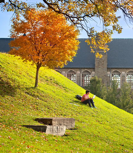 A student sits on a grassy hill near a tree turned orange by autumn
