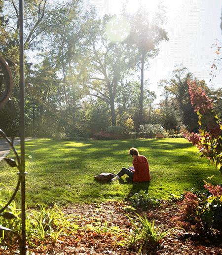 Person sitting on grass in a garden