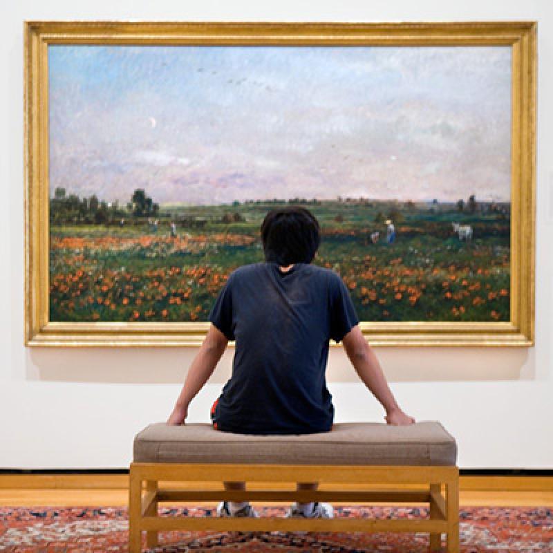 History of Art and Visual Studies