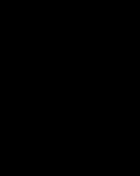 a black lattice