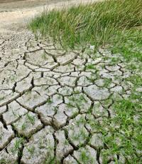 Dried up and cracking river bed