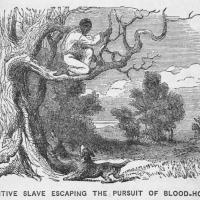 Antique line drawing of person in a tree, pursued by a dog