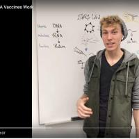 Person in front of white board, in video still