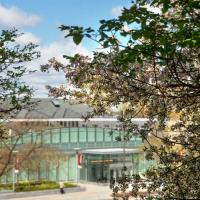 flowering trees frame a glass building