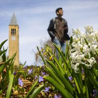 Student gazing into the distance with flowers in the foreground