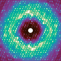 A halo of luminous green that depicts protein motion