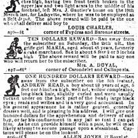 Poster for runaway slaves