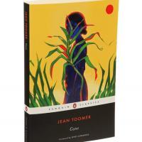 Cane book cover