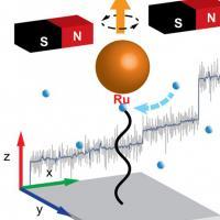 Illustration of polymer growth
