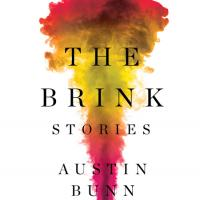 Cover of 'The Brink'