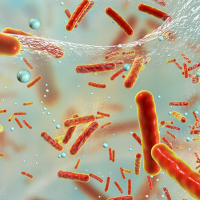 Antibiotic resistant bacteria in film.