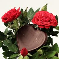 A heart shaped chocolate candy with two roses