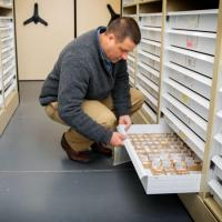Greg Dietl, curator of Cenozoic invertebrates at Paleontological Research Institution (PRI) and Cornell adjunct associate professor of earth and atmospheric sciences, examines samples donated to PRI.