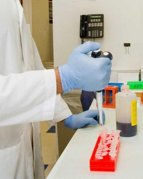 person in lab, using pipette