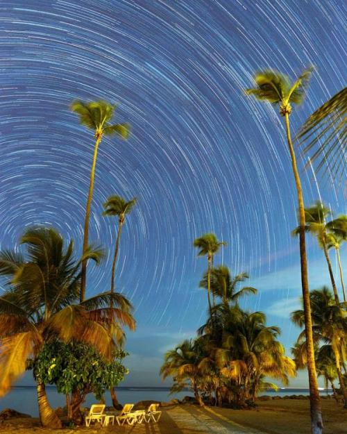 Sky full of stars, time lapse, over palm trees