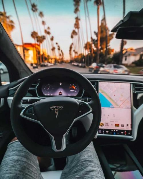 Interior of a self-driving car, looking out at palm trees