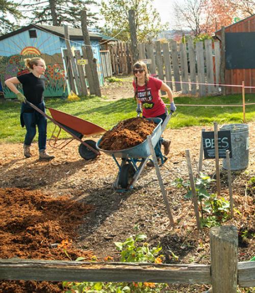 Volunteers at the Ithaca Children's Garden, pushing wheelbarrows