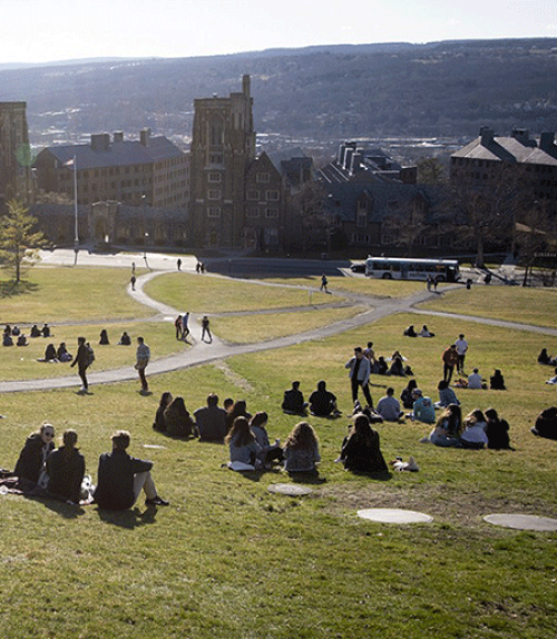 Students sit on a grass slope