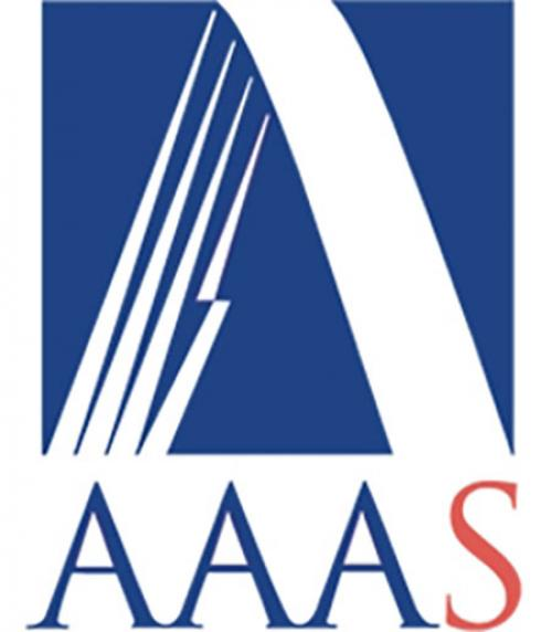 Logo for the American Academy of Arts