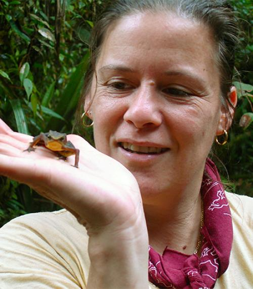 Kelly Zamudio, Goldwin Smith Professor of Ecology and Evolutionary Biology