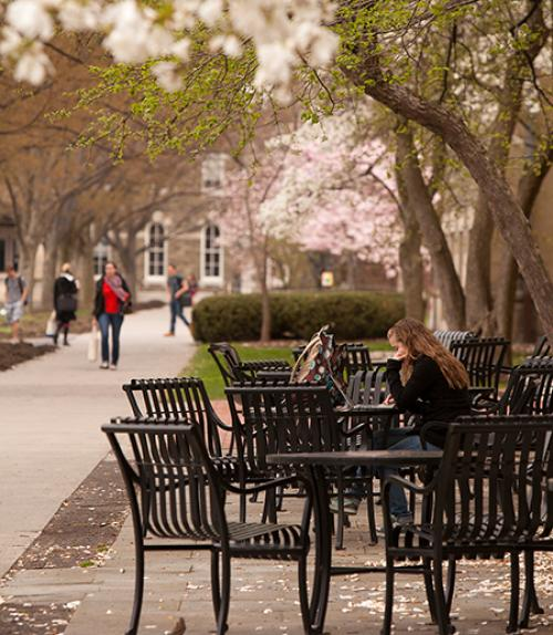 Student studying in front of Goldwin Smith Hall