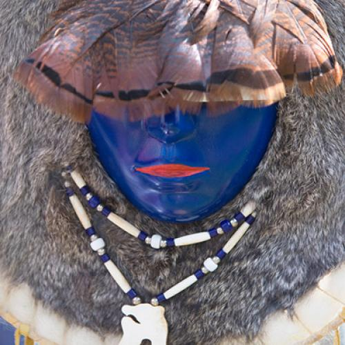 Minority, Indigenous & Third World Studies