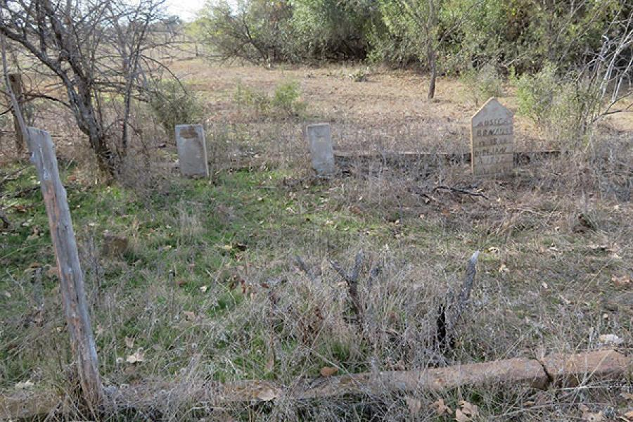 Three old gravestones in a row amidst weeds with trees in the background.