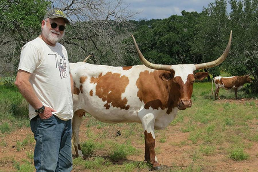 Harry Greene standing next to a longhorn cow