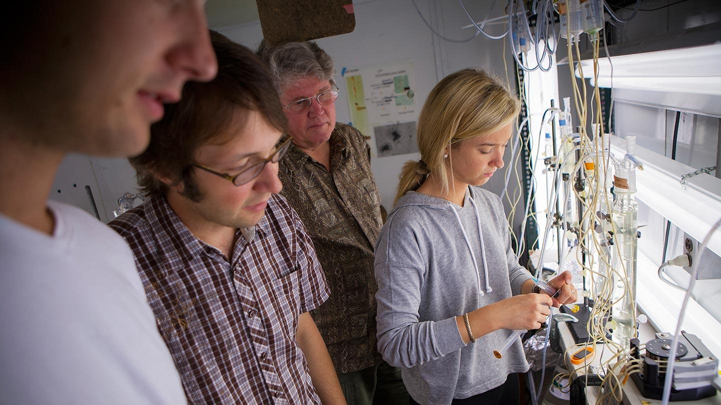 Students conducting summer research in the lab of professor Nelson Hairston